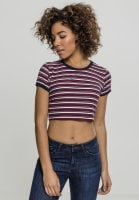 Short t-shirt with stripes 1